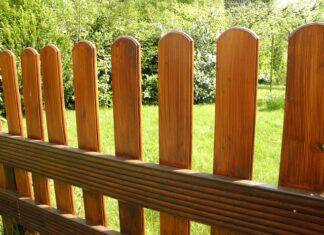 Jak urządzić przydomowy ogród